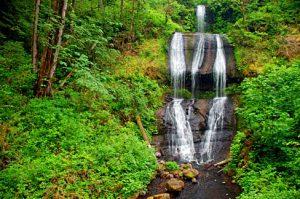 McDowell_Creek_Falls_(Linn_County,_Oregon_scenic_images)_(linnDA0095)