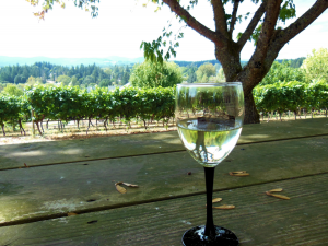 springhill-winery-albany-oregon