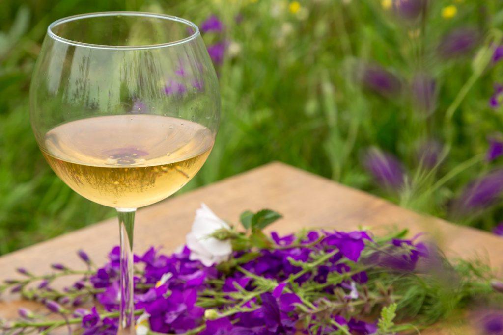 Wine glass against rural landscape, flower collection. Spring begin. purple flower field
