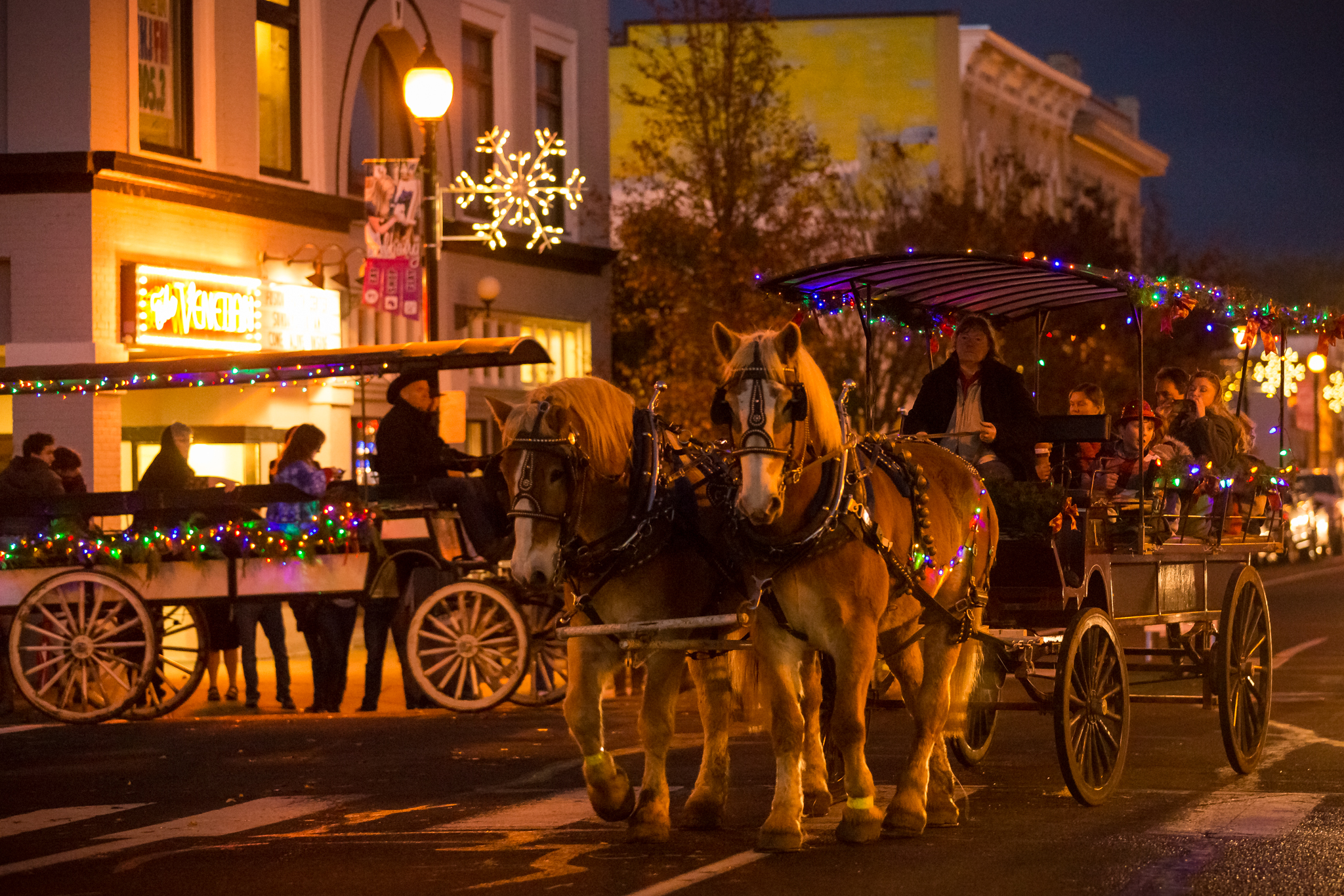 Photo of horses with carriage and trolley with Christmas decorations.