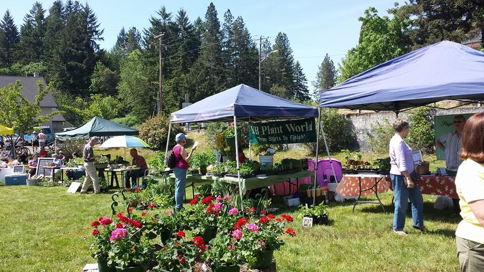 Photo of outdoor farmers market.