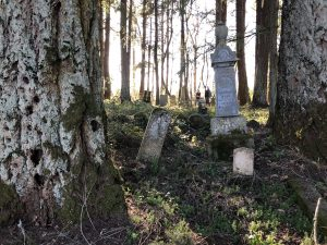 Photo of rural North Albany historic Gingles Cemetery with headstones under brush
