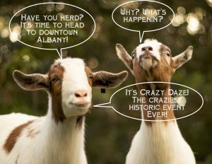 Graphic with two goats talking to each other about Crazy Daze event in Albany, Oregon