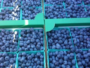 Photo of ripe blueberries in green containers at a local Albany Oregon farm