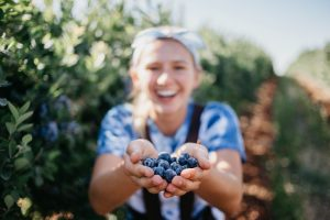 Photo of a woman holding out ripe blueberries at a u-pick farm