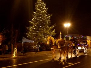 Photo of the horse-drawn wagon during the Christmas PArlour Tour at night in front of a Christmas tree