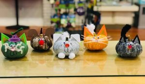 Pumpkin Pets @ Sniffany's Pet Boutique | Albany | Oregon | United States