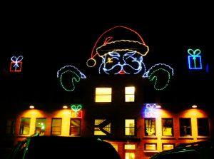 Photo of Albany Oregon lit with multi-colored Christmas lights in the shape of Santa Claus