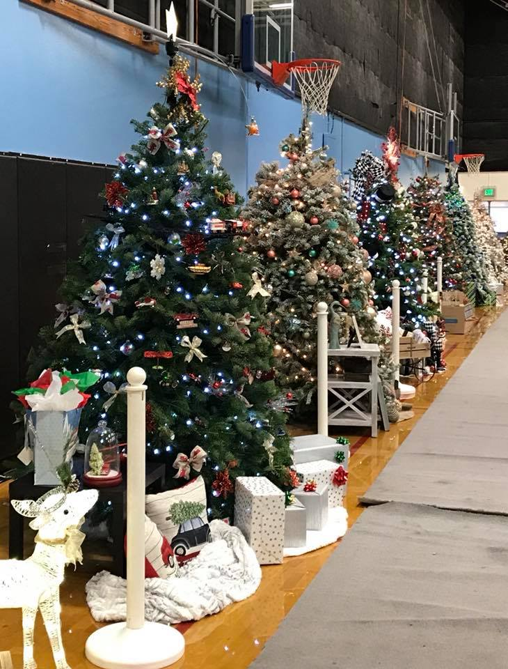 Photo of several decorated Christmas trees.
