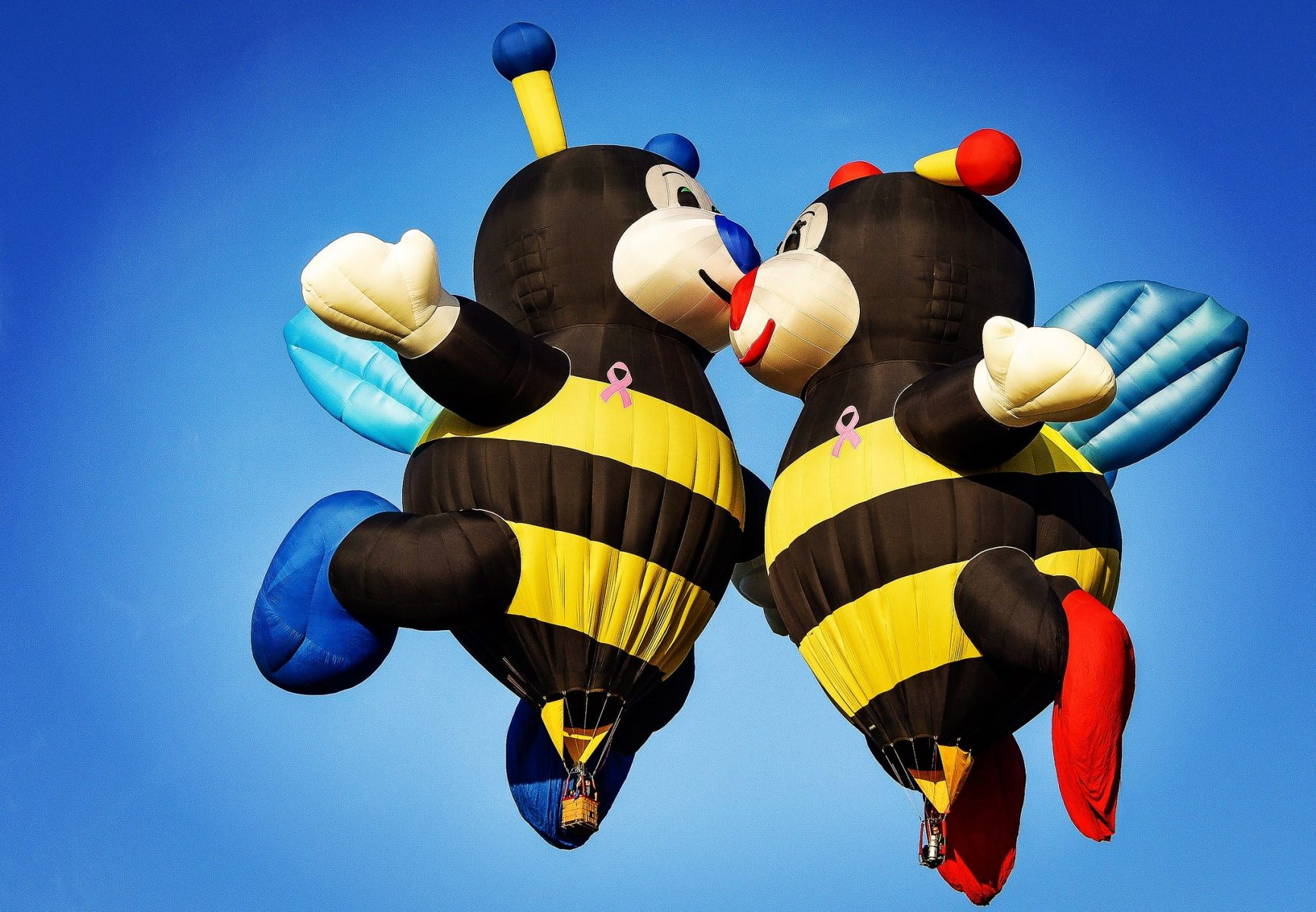 Photo of two bee shaped hot air balloons kissing