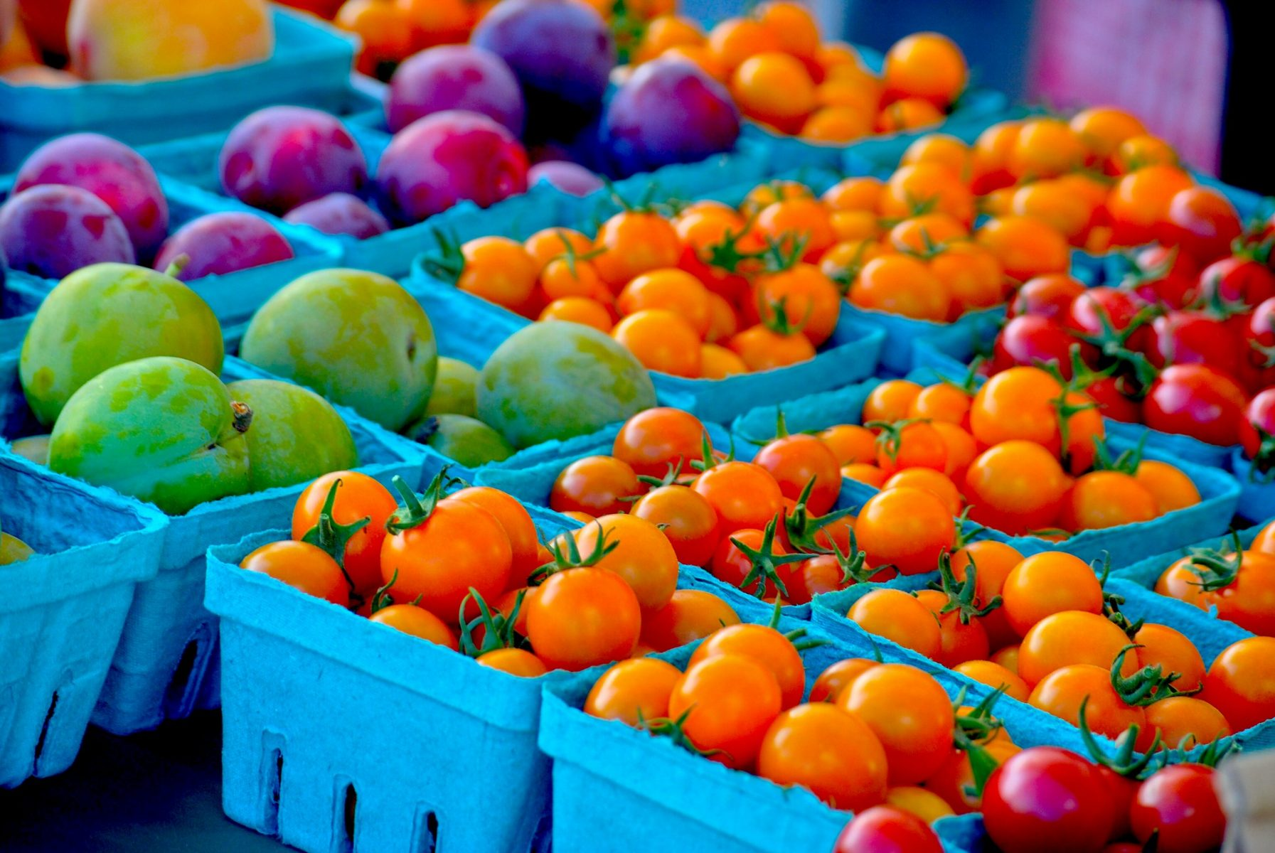 Photo of tomatoes at farm stand