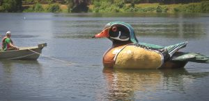 Photo of large painted duck on Waverly Lake, Albany, OR.