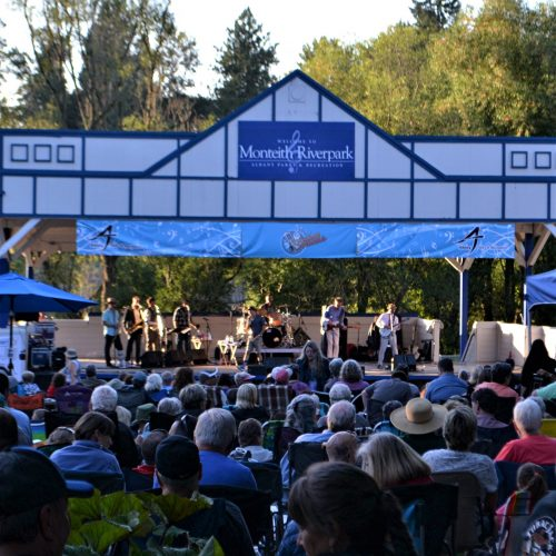 Photo of outdoor concert. Albany, OR.