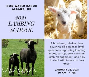 Lambing School @ Iron Water Ranch | Albany | Oregon | United States