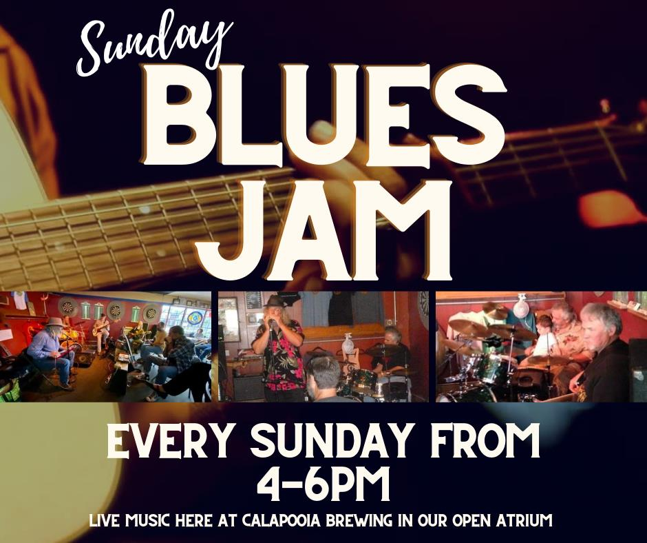 photos of preformers at Blues Jam, Calapooia Brewing, Albany, OR